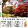パワースポット古峯神社の紅葉を撮りに行く。