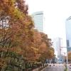 新宿散歩 with一眼レフ②♪♪ 新宿中央公園の紅葉☆