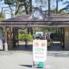新宿御苑で春のお散歩 & オビ洋書で萌え爆裂!