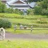 中岡慎太郎生誕地周辺整備の様子。
