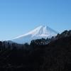【高川山~むすび山】むすび山でおむすびを食べたい!