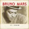 【洋楽歌詞で学ぶ英語】第5回 Bruno Mars - If I Knewの歌詞和訳で覚える仮定法