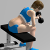 New App Released - Concentration Curl, App for Muscle Training