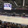 欧州選手権エキシビション・2017.1.29