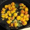 家庭菜園だからこそ食べられる品種がある。プチ農園ライフ日記