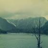 焼岳の噴火でせき止められた梓川から生まれた「大正池」
