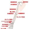 【基礎から学ぶ】各論:上肢の骨折【整形外科学】