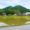 田園風景と農作物への意識の変化【今日の写真と日本の心#2】