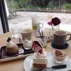 美味しいケーキならスイーツ激戦区の札幌でも大人気のbenbeya(べんべや)