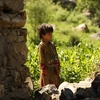 根本的に変わった米政府のアフガン戦略