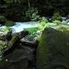 奥入瀬渓流から十和田湖へ