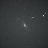 おとめ座 Arp286 相互作用する三つ子銀河