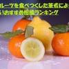 高級フルーツを食べつくした筆者による美味しいおすすめ柑橘ランキング