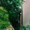 「成田東の家」9年後の訪問