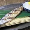 オメガ3脂肪酸のとりすぎに注意!魚の油の食べ過ぎに注意?