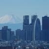 文京シビックセンターからの都庁&富士山