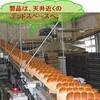 パンの冷却 装置のトレンド