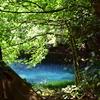 清流・牛渡川と梅花藻(バイカモ)、丸池様
