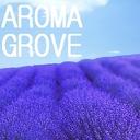 AROMA GROVE