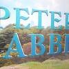 ピーターラビット【可愛らしい主人公のウサギ達とは対象的に内容は過激】