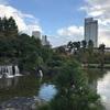 天守閣が印象的な緑豊かな富山城址公園