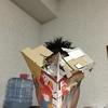 10月10日(火) ハヘンダ―3(スリー) A面
