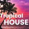【配信アルバム】Party Tropical House -気分を上げるトロピカルハウス-