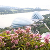 これ、いくらだ?!シンガポールのリアルな物価をご紹介。