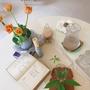 済州島(チェジュ島)カフェ巡り #コーヒーもスイーツも美味しい「バニラパレット」