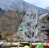 赤ちゃん(生後6ヶ月)と箱根温泉旅行に行ってきた。赤ちゃん連れokのおすすめ観光スポットや旅館紹介。