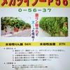 粉タイプの亜リン酸の葉面散布剤!「メガツイン 0-56-37」