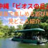 【2019年】沖縄「ビオスの丘」は家族で楽しめる最高の遊び場!見どころ紹介