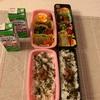 3連休〜今日のお弁当〜今日のわんこ