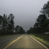 アメリカ往復ソロキャンプの旅③森の恐怖におびえながらキャンプ【ルイジアナ州キサッチー国立森林公園】