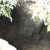 多くの人の病を癒した 霊泉の出た菊水観音堂(横浜市保土ヶ谷区)