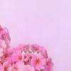 【チャネリング】愛とは。どこまでも深く優しい愛の存在より。【弟橘姫】