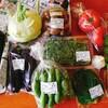 北海道も夏野菜真っ盛り!ヘルシー料理頑張ってます!