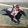 『競馬パネル:ウイニングチケット「1993年:第60回東京優駿」』