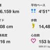 久々の箱根駅伝観戦と、それに影響を受けて走った練習日記