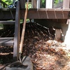 デッキ下の枯れ葉除去
