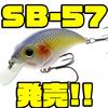 【Bill Lewis】マークダニエルズJr監修のシャロークランク「SB-57」発売!
