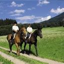乗馬で股関節や腰痛で悩む前のストレッチ法