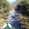 阪急交通社のツアーでかずら橋へ