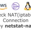 iptablesのNATコネクション状態を確認する(AWS NATインスタンスなど)