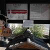 サクランピック2020 in TANIGUMI  名鉄・谷汲駅の悲しい桜