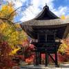 Reishoji - The most breathtaking spot to see fall foliage in Omachi Nagano, Japan