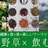 イベント募集開始 【自然の恵みを頂く、魔女のあとりえ入門編:薬草茶のイロハ、飲み比べ体験@東京10/5】