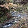 〈個人山行〉京都百名山シリーズNo.33・34品谷山・ソトバ山