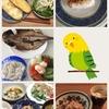 【34w0d】17/06/05の食事
