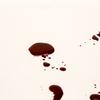 44歳男が母親殺害か・・・ 大阪